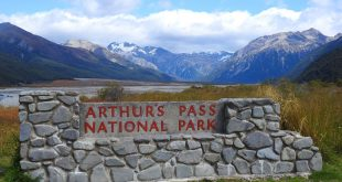 Arthur's Pass National Park, Canterbury Region, New Zealand