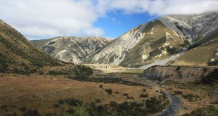 Hanmer Forest Park, Canterbury Region, New Zealand