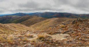 Kaimanawa Forest Park, Tongariro and Taupo Regions, New Zealand