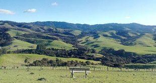Tapapakanga Regional Park, Auckland Region, New Zealand