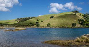 Tawharanui Regional Park, Auckland Region, New Zealand