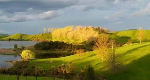 Te Urewera National Park, East Coast (Gisborne) Region, New Zealand
