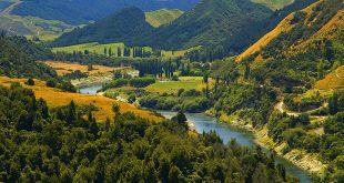 Whanganui National Park, Wanganui Region, New Zealand