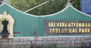 Sri Venkateswara National Park, Andhra Pradesh, India