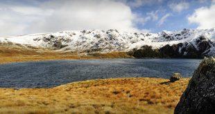 Kahurangi National Park, Nelson, Marlborough and West Coast Regions, New Zealand
