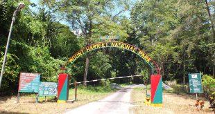Mount Harriet National Park, Andaman and Nicobar Islands, India