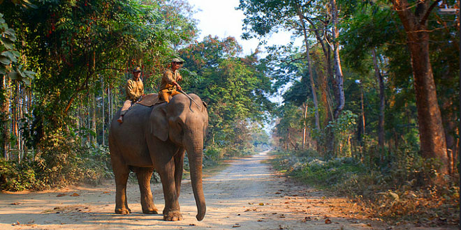 Nameri National Park, Assam, India