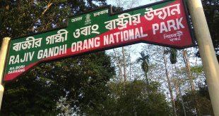 Orang National Park, Assam, India