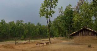 Sanjay National Park, Chhattisgarh, India