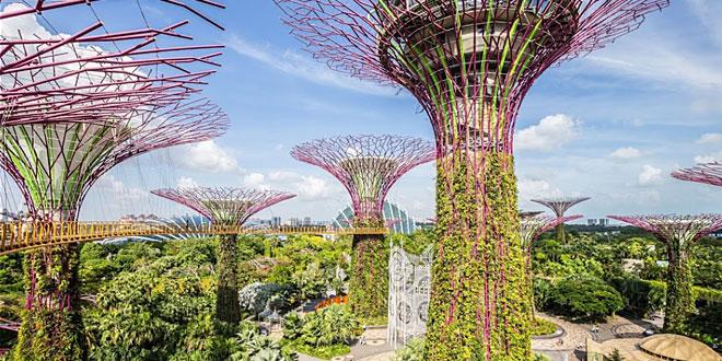 परी लोक जैसा है सिंगापुर में 'गार्डन्स बाई द बे'