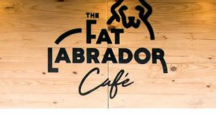The Fat Labrador Cafe, Bavdhan, Pune Cafe