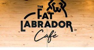The Fat Labrador Cafe, Bavdhan, Pune Cafe
