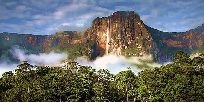 सूरीनाम: छोटा देश, बड़े जंगल