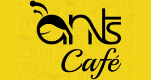 Ants Cafe, Gachibowli, Hyderabad Continental Restaurant